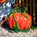 Кашпо для растений тыква
